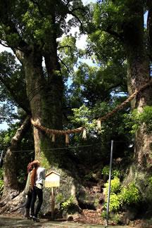 細江神社1
