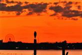 浜名湖夕日と鳥