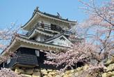 さくらの浜松城