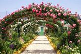 花の美術館アーチ