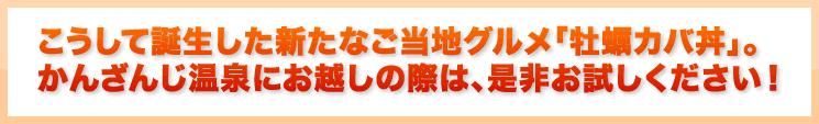 こうして誕生した新たなご当地グルメ「牡蠣カバ丼」かんざんじ温泉にお越しの際は、是非お試しください!浜名湖かんざんじ温泉観光協会