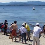 地引き網体験サンビーチ