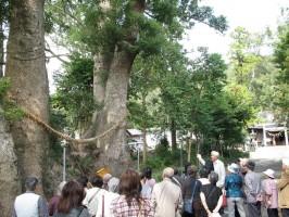 細江神社H24 003