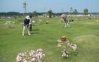 浜名湖Gゴルフパークh26 (1)