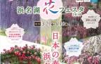 20171230_浜名湖花フェスタ1